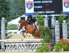 Picante, Small Pony Hunter at 2014 Pony Finals