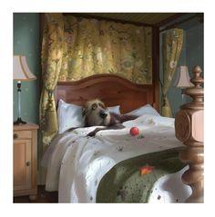Digital artist Stephen Hanson art prints for sale, buy Stephen Hanson Toby the dog art online full UK delivery at Arthouse Gallery Animal Drawings, Art Drawings, Drawing Animals, Dog Illustration, Breakfast In Bed, Dog Paintings, Whimsical Art, Art Auction, Dog Art