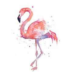 Flamingo Watercolor Painting Art Print Giclee Bird Animal Wall Art... ❤ liked on Polyvore featuring home, home decor, wall art, flamingo, birds, embellishment, effect, filler, detail and phrase