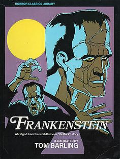 Frankenstein Critical Evaluation - Essay