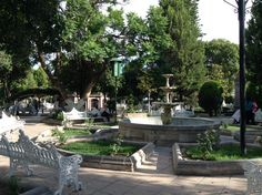 Fuentes del jardin de Jerez