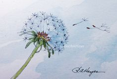 Dandelion Watercolor Painting by RoseAnn Hayes. Prints are available in my shop!