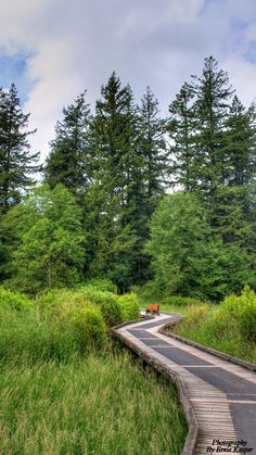 A walk to remember...  Campbell Valley Regional Park #langley #parks