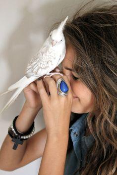 bird bird bird