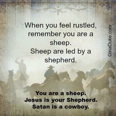 """""""Jesus is a Shepherd; Satan is a Cowboy"""".  One of the best funny little sayings that can help you determine if God is leading you or if Satan is trying to deceive you.  Click to read this post or go to GinaDuke.com for more moments of clarity."""