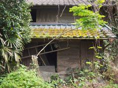 kagoshima ruin