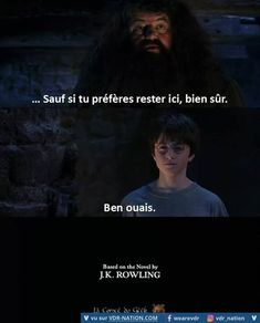 Hagrid : Unless you rather stay here Harry : Yeah actually Harry Potter Film, Harry Potter Jokes, Harry Potter World, Harry Potter Disney, Hermione, Draco, Funny Images, Funny Pictures, Doctor Who