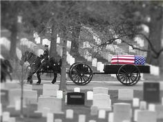 Arlington National Cemetary....the resting place of true heroes. Rest in Peace brave warriors. Thank you.