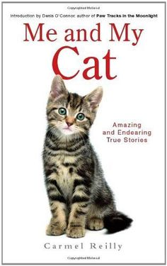 Me and My Cat - Carmel Reilly NEW Paperback 05/07/2012