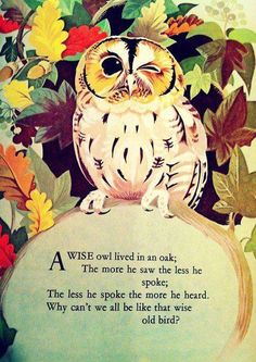 wise ole owl...    my mother used to quote this to me......