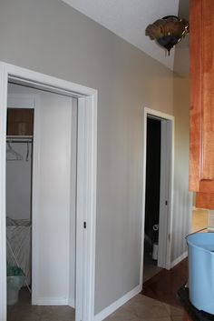 Paint your walls with Sherwin Williams Mindful Gray Mindful Gray Paint colors Sherwin Williams - Model Home Interior Design Interior Paint Colors, Paint Colors For Home, Living Room Paint, My Living Room, Room Colors, House Colors, Wall Colors, Christmas Bedroom, Christmas Decor