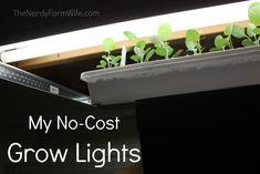 My No-Cost Grow Lights