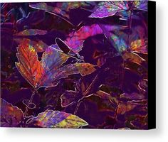 Dragonfly Insect Nature Macro Canvas Print / Canvas Art by PixBreak Art Dragonfly Insect, Abstract Canvas, Great Artists, Insects, Greeting Cards, Tapestry, Art Prints, Nature, Poster