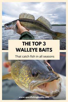 Walleye Bait, Walleye Fishing Lures, Trout Fishing Tips, Fishing Guide, Fishing Tricks, Best Walleye Lures, Walleye Rigs, Fishing Techniques, Fishing Girls