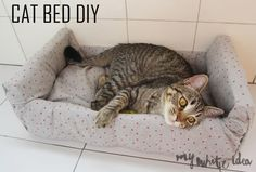 CAT BED DIY from Fruit Crate