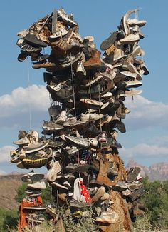 """Zion National Park, Utah """"shoe tree"""" photo by Tina Schell"""