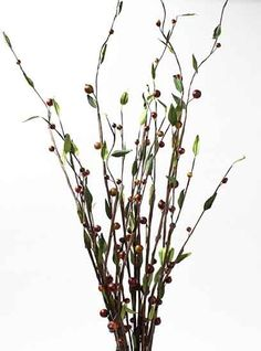 This is awesome wild berry and willow branch I ordered two and love them they are really tall very pretty and so cheap Willow Branches, Vase Fillers, Tall Vases, Berry, Glass Vase, Wedding Ideas, Awesome, Pretty, Plants