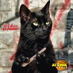 ATOMIK RADIO avec DJ SHOO les vendredis soir c'est complètement débile! www.atomik-radio.fr