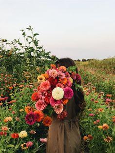 VSCO - ckrispy Spring Aesthetic, Flower Aesthetic, Flower Farm, My Flower, Wild Flowers, Beautiful Flowers, Cut Flowers, Cactus E Suculentas, Arte Floral