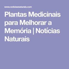 Plantas Medicinais para Melhorar a Memória | Notícias Naturais
