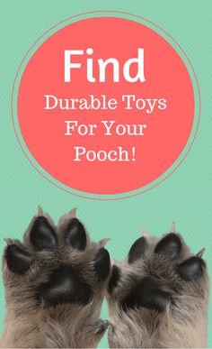 Tough toys and USA-made treats up to 75% off l Doggyloot