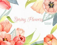 Watercolor Flowers Clipart Hand Painted Floral Clip Art