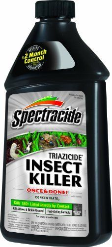 Spectracide 95829 Triazicide Once and Done! Insect Killer, 32-Ounce Concentrate by Spectracide. $12.47. Spectracide Triazicide Once and Done. Insect Killer Concentrate, 32-ounce - 95829