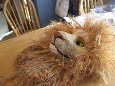 Papier Mache Lion Mask. I would like a slightly less realistic version than this, but they are artists afterall. Thoughts?