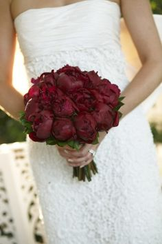 Red blooms and stunning white wedding dress: http://www.stylemepretty.com/australia-weddings/new-south-wales-au/2013/11/15/the-verandahs-terrara-house-estate-wedding-from-blumenthal-photography/ | Photography: Blumenthal Photography - http://blumenthalphotography.com.au/
