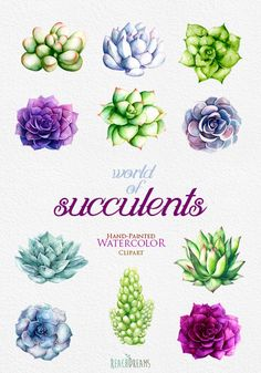 This set of 11 high quality hand painted watercolor succulents Perfect graphic for wedding invitations, greeting cards, photos, posters, quotes and