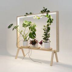 johan kauppi launches illuminated frame for potted plants at stockholm furnitur. - - johan kauppi launches illuminated frame for potted plants at stockholm furniture fair Furniture Makeover, Diy Furniture, Furniture Design, Green Furniture, Modern Furniture, Decoration Plante, Interior Plants, Interior Logo, Bar Interior