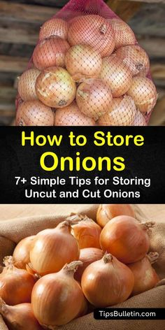 Storing onions and potatoes on counter together will shorten their shelf life. Learn how to store onions from garden long term and cut onions in fridge. You can also store cooked onions in the freezer for future meals. Storing Onions And Potatoes, How To Store Potatoes, Drying Onions, Fresco, Potato Storage, Fruit And Vegetable Storage, Storing Fruit, Canned Food Storage, Gardening
