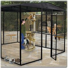 Outdoor kitty play space  17 custom Colors!  Cages By Design. Outdoor Cat Cage, Outdoor Cats, Outdoor Cat Kennel, Outdoor Cat Houses, Outdoor Play, Cat Habitat, Cat Room, Catio, Cat Furniture
