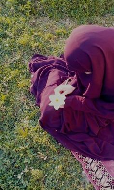 Muslim Girl - Hijab - Niqab - Looking at Flower