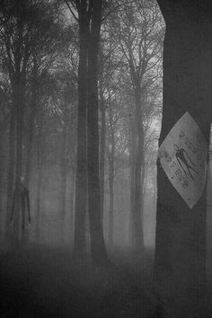 Slenderman wrote no all over that did any one else notice that first thing Jeff The Killer, Wallpapers Terror, Scary Stories, Horror Stories, Creepypasta Slenderman, Scary Wallpaper, Horror Art, Dark Art, Supernatural