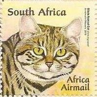 News Archive January - June 2011 Black Footed Cat, Stamp World, Small Wild Cats, Going Postal, Envelope Art, Vintage Cat, African Animals, Domestic Cat, Stamp Collecting