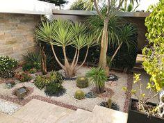Desert Landscaping Backyard, Landscaping With Rocks, Front Yard Landscaping, Landscaping Ideas, Dessert Landscaping, Desert Gardening, Arizona Backyard Ideas, Arizona Gardening, Landscape Design