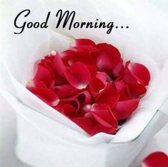 Good morning my beautiful angel 😙 I love you so much sweetheart 😙 Good Morning Wednesday, Good Morning Love Messages, Morning Thoughts, Good Morning Texts, Good Morning Coffee, Good Morning Picture, Good Morning Good Night, Good Morning Wishes, Good Morning Quotes