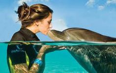 Swimming with Dolphins in Mauritius Island!
