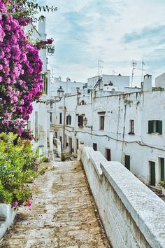 Ostuni (Puglia) by Alessandro Giannese