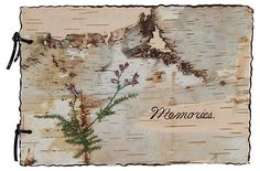 Birch Bark Memories Album | VMF - Books | One Kings Lane