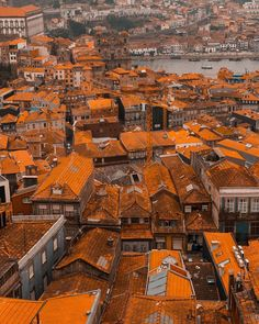 TOP Porto ���