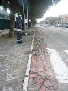 """Giulianova, """"Bike to coast"""": devono essere abbattuti i pini - Attualità - Primo Piano"""