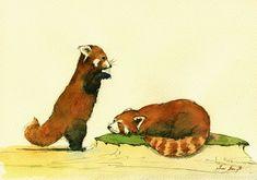 PRINT-Red panda lesser panda red cat bear head painting watercolor PRINT Panda…