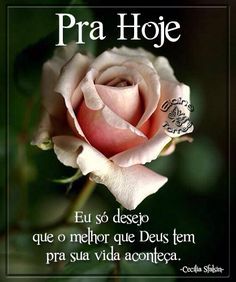 Cartões Elaine Torres Good Morning Happy, Good Morning Quotes, Birthday Clips, Birthday Wishes, Peace Love And Understanding, Special Words, Girls In Love, Spiritual Quotes, Peace And Love