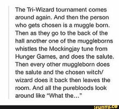 Harry Potter and the Hunger Games crossover Harry Potter Jokes, Harry Potter Fandom, Harry Potter World, Harry Potter Crossover, Harry Potter Imagines, Hogwarts Brief, Scorpius And Rose, No Muggles, Yer A Wizard Harry