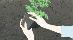 Animated gif shared by Lew. Find images and videos about gif, art and flowers on We Heart It - the app to get lost in what you love. Anime Body, Manga Anime, Anime Art, Gifs, Wolf Children, Aesthetic Gif, Desert Plants, Anime Scenery, Tumblr
