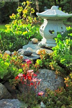 Kivikkopuutarhaa - sammalrikko punainen maksaruoho japanilainen lyhty puutarhalyhty tuikkulyhty kivikkopuutarha kesä kasvi mehikasvi