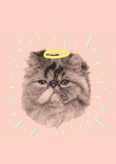 Halo Cat Birthday Card   Scribbler.com