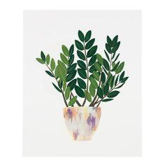 ZZ Plant Print – Our Heiday